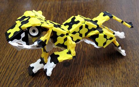 Cheetah_IMG_3872.jpg