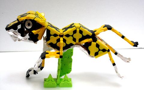 Cheetah_IMG_3884.jpg