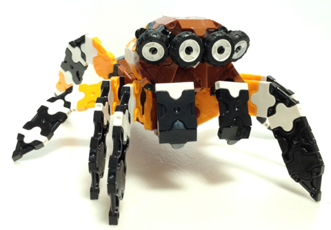 Spider5_IMG_w480s02.jpg