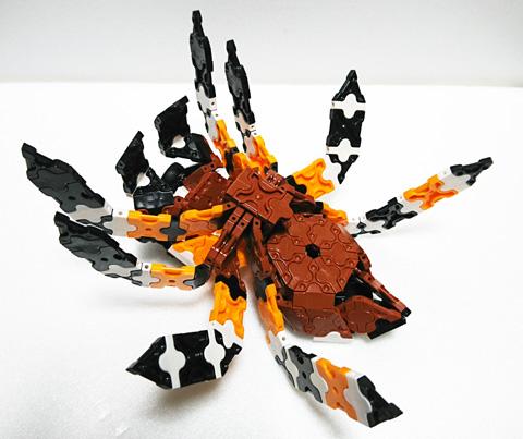 Spider5_IMG_w480s04.jpg