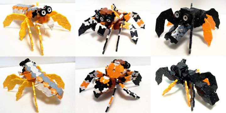 Spider5_IMG_w480s05.jpg