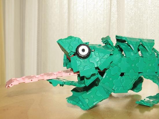 chameleon_05.jpg